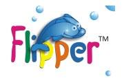 flipper_logon.jpg